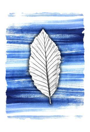 https://imgc.artprintimages.com/img/print/brushstrokes-1_u-l-f9a5cf0.jpg?p=0