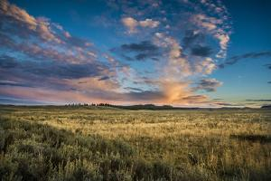 Evening Light In The Hayden Valley, Yellowstone National Park by Bryan Jolley