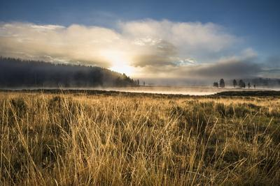 Golden Morning Light On The Yellowstone River In The Hayden Valley, Yellowstone National Park