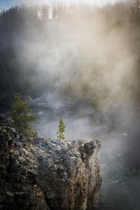 Misty Morning At The Upper Falls On The Yellowstone River by Bryan Jolley