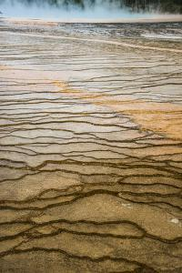 Raindrops On The Terraces Of The Grand Prismatic Spring Midway Geyser Basin, Yellowstone NP by Bryan Jolley