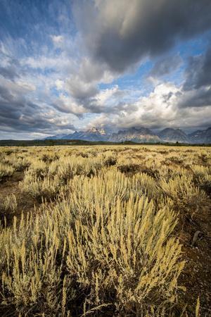 Sagebrush And Sky In Grand Teton National Park