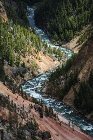The Yellowstone River Carves Through The Grand Canyon Of The Yellowstone, Yellowstone National Park