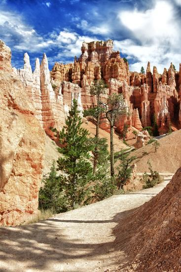 Bryce Amphitheater - Utah - Bryce Canyon National Park - United States-Philippe Hugonnard-Photographic Print