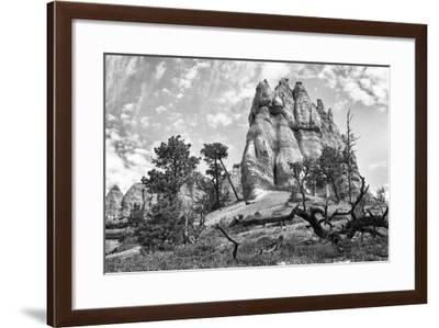 Bryce Amphitheater - Utah - Bryce Canyon National Park - United States-Philippe Hugonnard-Framed Photographic Print