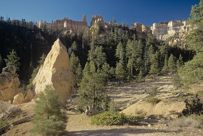 Bryce Canyon-Gordon Semmens-Photographic Print