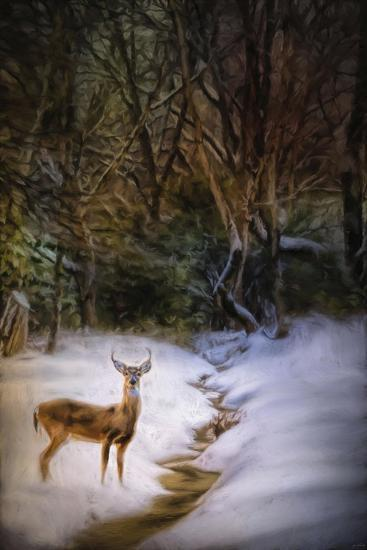 Buck at Snowy Creek-Jai Johnson-Giclee Print
