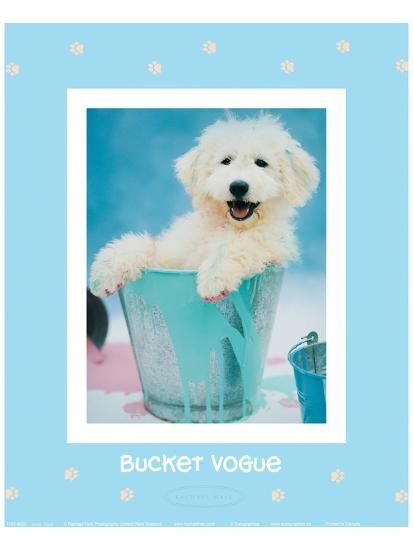 Bucket Vogue-Rachael Hale-Art Print