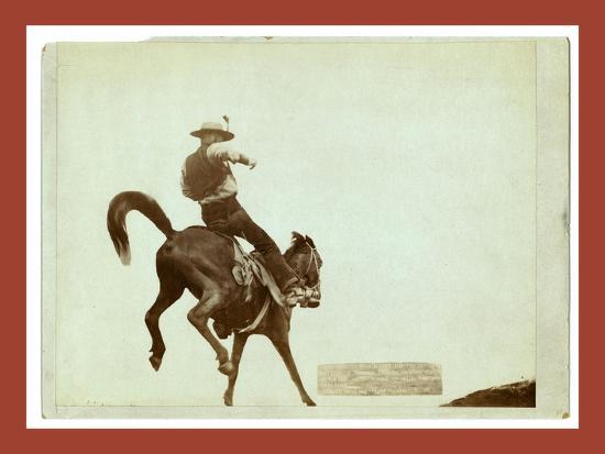Bucking Bronco. Ned Coy-John C. H. Grabill-Giclee Print