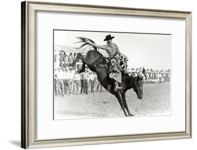Bucking Bronco Photo--Framed Art Print
