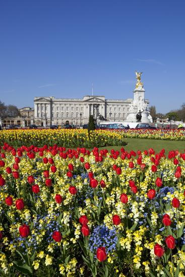 Buckingham Palace and Queen Victoria Monument with Tulips, London, England, United Kingdom, Europe-Stuart Black-Photographic Print
