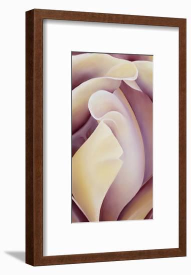 Bud of Fortune-Karen Cole-Framed Premium Giclee Print