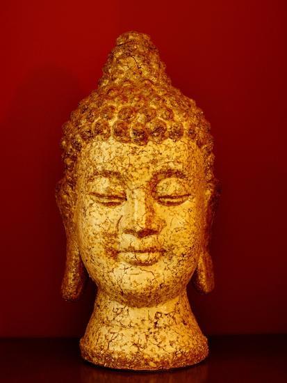 Buddha head--Photographic Print