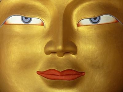 https://imgc.artprintimages.com/img/print/buddha-in-monastery-close-up-ladakh-india_u-l-pu74ie0.jpg?p=0