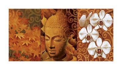 https://imgc.artprintimages.com/img/print/buddha-panel-ii_u-l-f5mc5h0.jpg?p=0