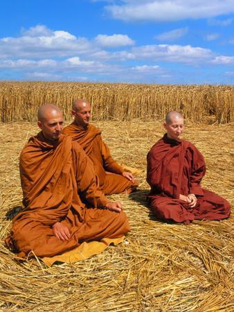 https://imgc.artprintimages.com/img/print/buddhist-monks-meditating-in-a-crop-circle_u-l-pzjast0.jpg?p=0