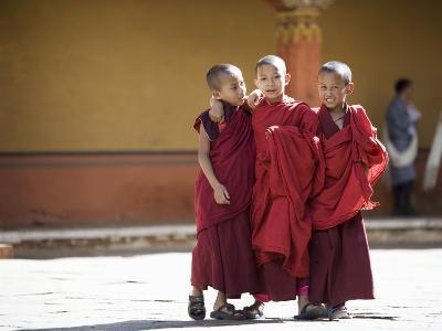 Buddhist Monks, Paro Dzong, Paro, Bhutan-Angelo Cavalli-Photographic Print