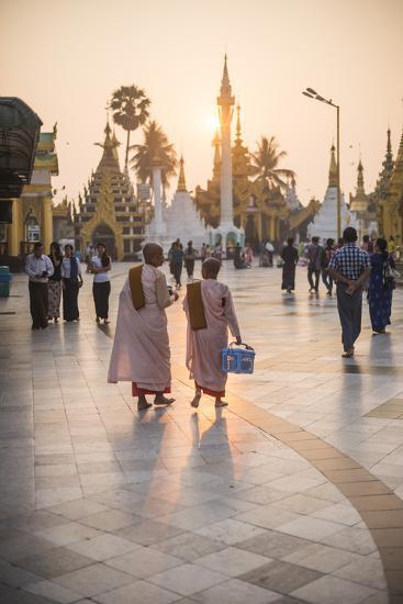 Buddhist Nuns in Pink Robes at Sunrise at Shwedagon Pagoda (Golden Pagoda), Myanmar (Burma)-Matthew Williams-Ellis-Photographic Print