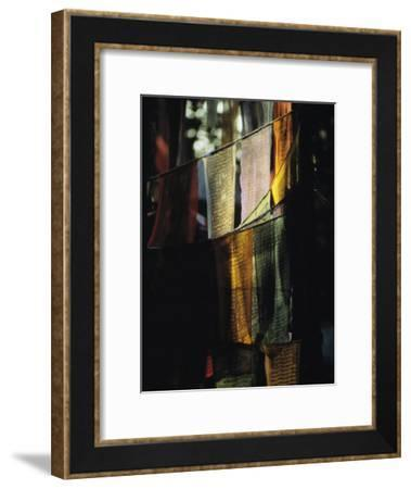 Buddhist Prayer Flags Hang in the Trees in Darjeeling-Ed George-Framed Photographic Print