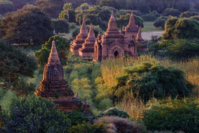 https://imgc.artprintimages.com/img/print/buddhist-temples-bagan-pagan-myanmar-burma-asia_u-l-q12s5vc0.jpg?p=0