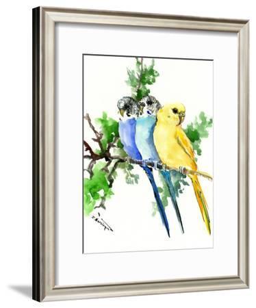 Budgies Parakeets-Suren Nersisyan-Framed Art Print