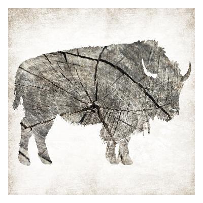 Buffalo Rings Mineral-Jace Grey-Art Print