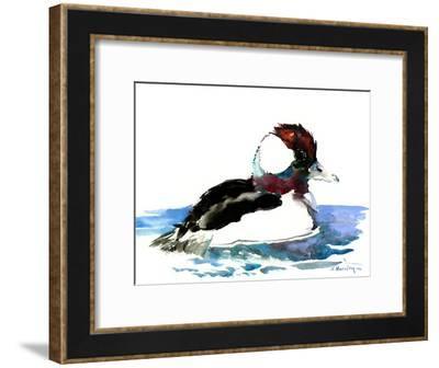 Bufflehead Duck-Suren Nersisyan-Framed Art Print