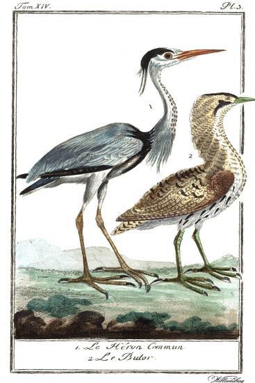Buffon Cranes & Herons III- Buffon-Art Print