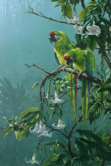 Buffons Macaws-Michael Jackson-Giclee Print