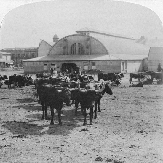 Building in Which Prisoners of War Were Tried, Pretoria, South Africa, Boer War, 1901-Underwood & Underwood-Giclee Print
