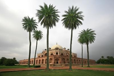 Building with Palm Trees in Foreground; New Delhi,India-Design Pics Inc-Photographic Print