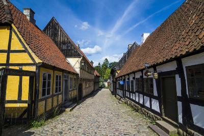 Buildings in the Old Town, Aarhus, Denmark-Michael Runkel-Photographic Print
