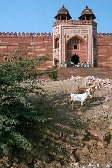 Buland Darwaza, Fatehpur Sikri, Agra, Uttar Pradesh, India-Vivienne Sharp-Photographic Print
