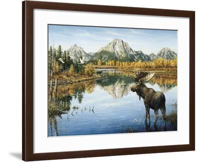 Bull Moose-Jeff Tift-Framed Giclee Print