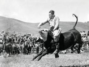 Bull Rider at American Rodeo
