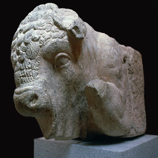 Bull's head Roman sculpture from the Municipal Forum in Merida, 1st century BC. Artist: Unknown-Unknown-Giclee Print