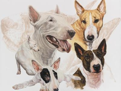 https://imgc.artprintimages.com/img/print/bull-terrier-with-ghost-image_u-l-q12tf3h0.jpg?artPerspective=n