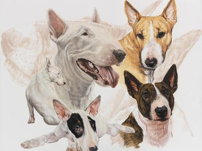 Bull Terrier with Ghost Image-Barbara Keith-Giclee Print