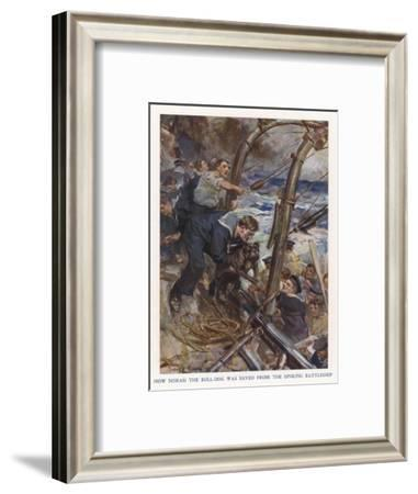 Bulldog Rescued-Cyrus Cuneo-Framed Giclee Print