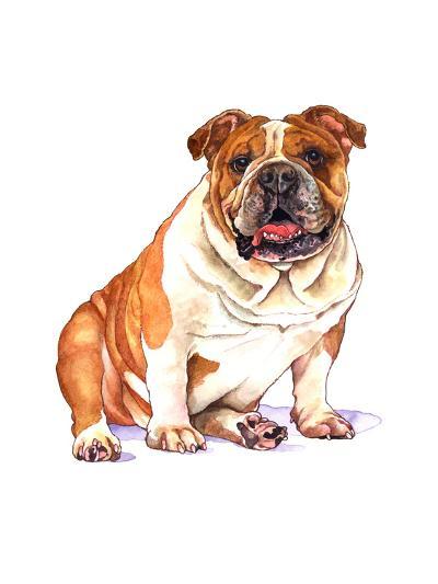 Bulldog-Wendy Edelson-Giclee Print