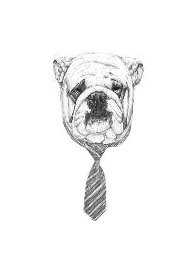 Bulldog-Balazs Solti-Giclee Print