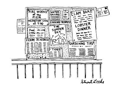 Bulletin board with various leaflets pinned up on it; they say 'The Summer? - New Yorker Cartoon-Stuart Leeds-Premium Giclee Print