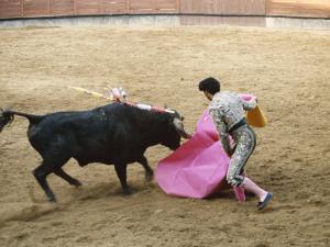 Bullfighting, Plaza de Toros, Ronda, Andalusia, Spain