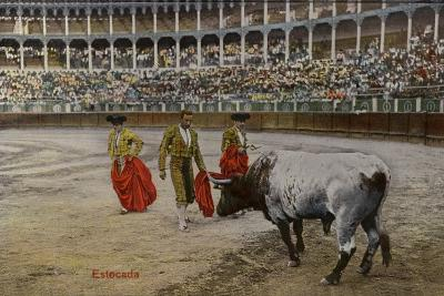 Bullfighting Scene, Spain--Photographic Print