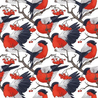 Bullfinch Bird Winter Illustration Seamless Pattern- DoubleBubble-Art Print