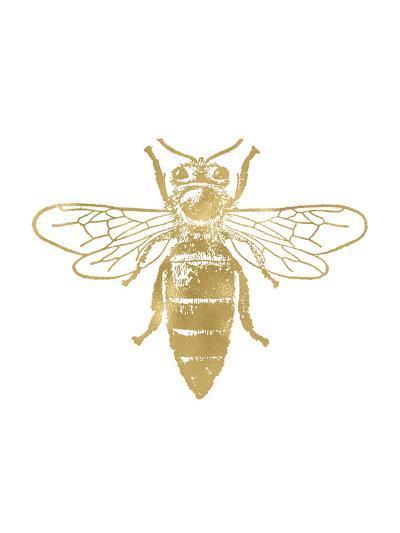 Bumblebee Golden White-Amy Brinkman-Art Print