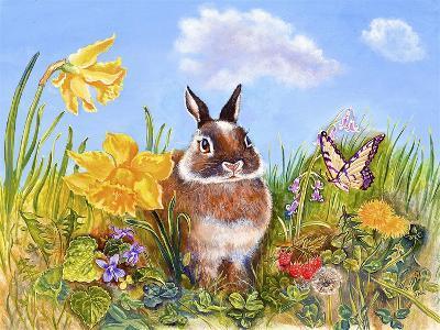 Bunny in Meadow-Judy Mastrangelo-Giclee Print