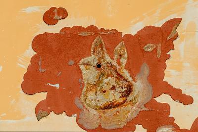 Bunny-Ursula Abresch-Photographic Print