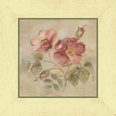 Burgundy Rose-Cheri Blum-Art Print