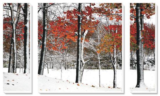 burney-lieberman-snowfall